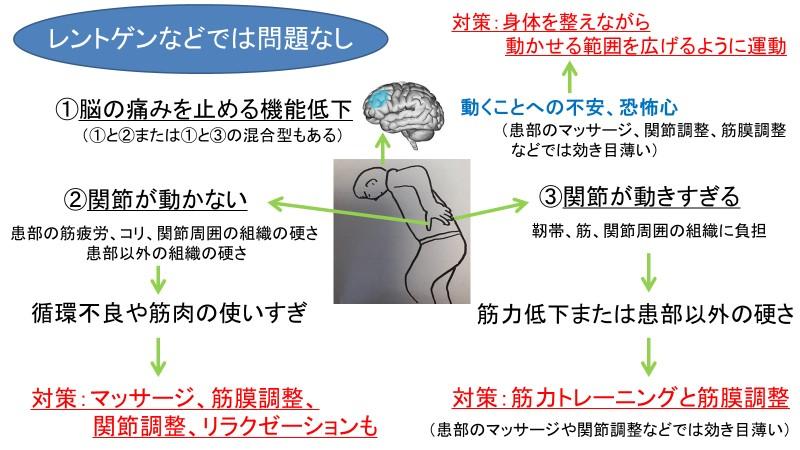 仙腸関節の腰痛に対して筋膜の治療を選んでほしい理由