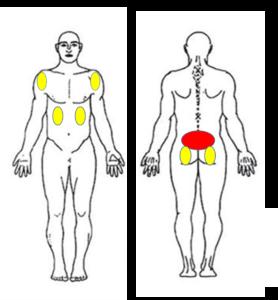 仙台市青葉区でぎっくり腰の腰痛に筋膜を施術する整体